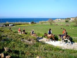 donkey treks, horseback riding, Lesvos, Greece