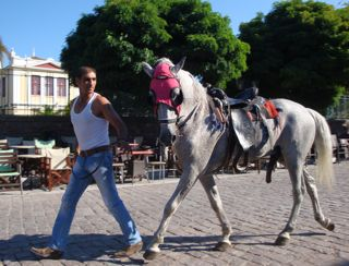 Horseracing in Lesvos