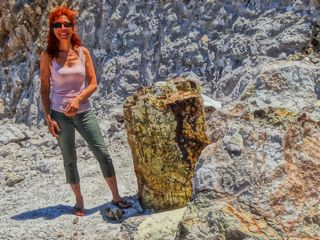 Petrified Forest, Lesvos